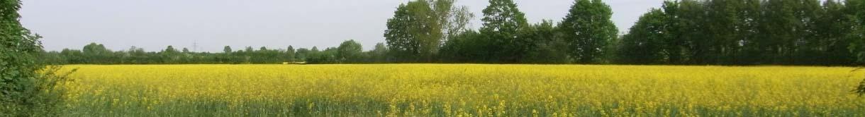 Wir möchten die Feldmark um Schönningstedt erhalten